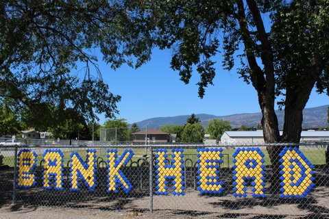 Welcome to Bankhead Elementary!!  Home of the Bulldogs!!